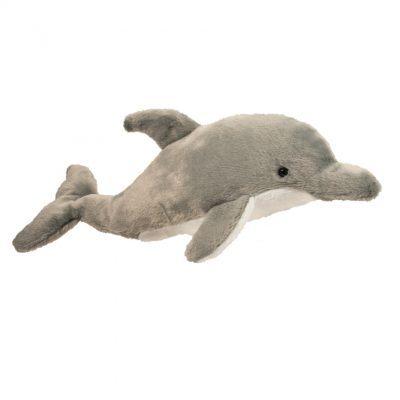 Dash Dolphin