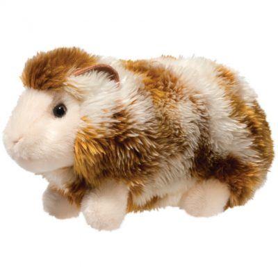 Abner Guinea Pig