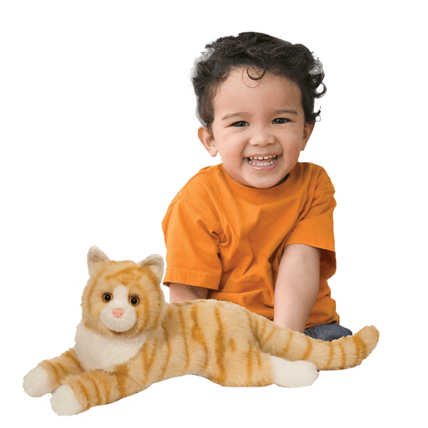 Orange Stuffed Cat with Boy