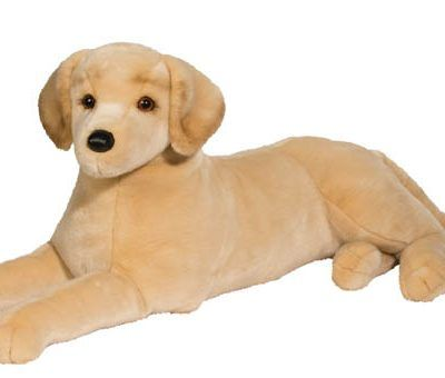 Scout YELLOW LAB*