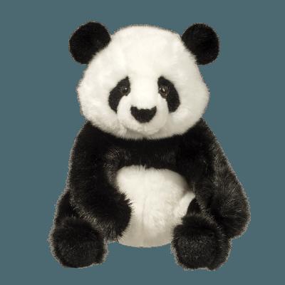 Paya Panda