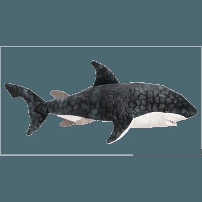 Neptune Blue Shark