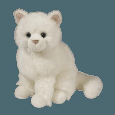 Snowball White Cat