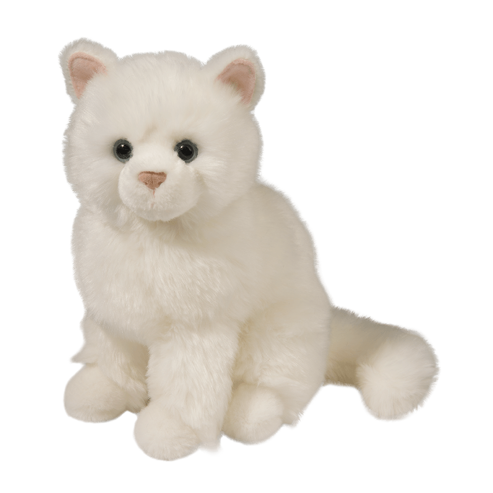 Snowball White Cat