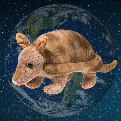 Earth Day Armadillo