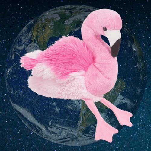 Earth Day Flamingo