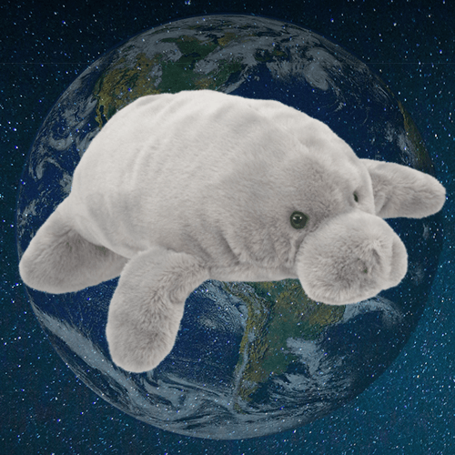 Earth Day Manatee