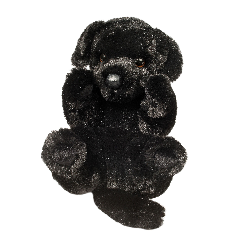 Ben Large Handful Pup