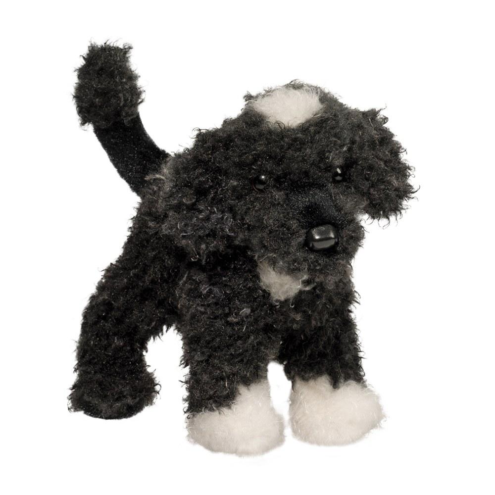 Moxie Portuguese Water Dog