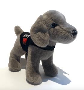 Riley the Museum Dog exclusive stuffed animal made by Douglas Cuddle Toys for the Museum of Fine Arts in Boston. This special portrait plush wears a removable black vest with his name and the MFA logo.